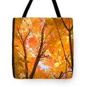 In The Autumn Mood  Tote Bag