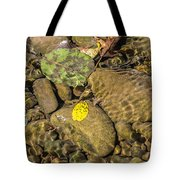 In The Autumn The Port Tote Bag