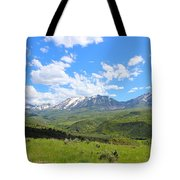 In The Back Country 2 Tote Bag