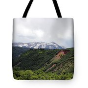 In The Back Country Tote Bag