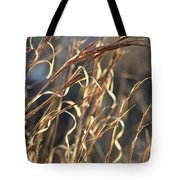 In The Beauty Of Morning Tote Bag