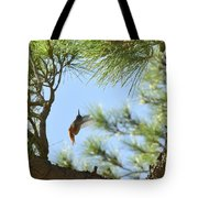 In The Big Tree Tote Bag