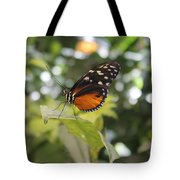In The Butterfly Room At The Insectarium Tote Bag