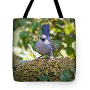 In The Catbird Seat Tote Bag