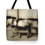 In The Cool Of The Evening Tote Bag