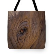 In The Eye Of The Elephant Tote Bag