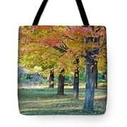 In The Fall Tote Bag