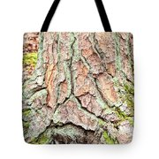 In The Forest Art Series - Tree Bark Patterns 1  Tote Bag