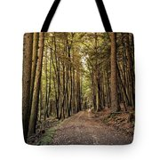 In The Forest Cathedral  Tote Bag