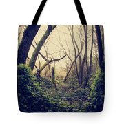 In The Forest Of Dreams Tote Bag