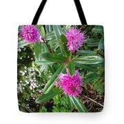 Hebe Bush In The Garden Tote Bag