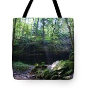 In The Garden Of The Rocks Tote Bag
