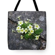 In The Garden Path Tote Bag