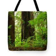 In The Land Of Giants Tote Bag