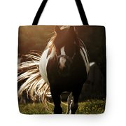 In The Last Rays Of Setting Sun Tote Bag