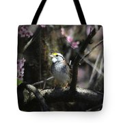 In The Light Of Morning Tote Bag