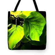 In The Limelight Tote Bag