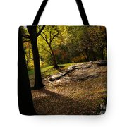In The Magical Light 2 Tote Bag