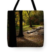 In The Magical Light Tote Bag