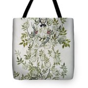 In The Midst Of A Tree Sat A Kindly Looking Old Woman' Tote Bag