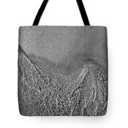 In The Moment Bw  Tote Bag