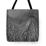 In The Moment Bw Three  Tote Bag