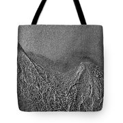 In The Moment Bw Two  Tote Bag