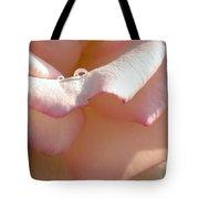 In The Morning Sun Tote Bag