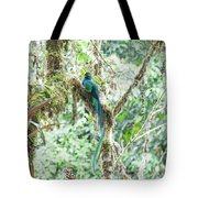 In The Moss Tote Bag
