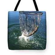 In The Net Tote Bag
