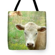 Posing In The Pasture Tote Bag