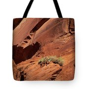 In The Rock Life Will Come Tote Bag