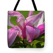 In The Schedel Garden Tote Bag
