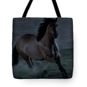 In The Shadows II Tote Bag