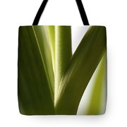 In The Spotlight Of Support Tote Bag