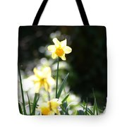 In The Springtime Sunshine Tote Bag