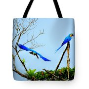 In The Wild Tote Bag