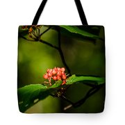 Vermont---in The Wild Tote Bag