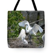 In The Wild White Snowy Egrets Photography ....photo A Tote Bag