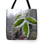 In The Winter Sunlight Tote Bag