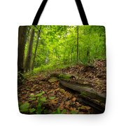 In The Woods_2 Tote Bag