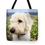 In Your Muzzle Tote Bag