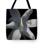 Inappropriate Gesture Tote Bag