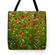 Indian Blankets Tote Bag