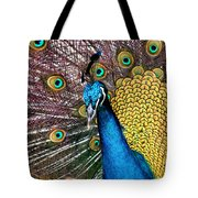 Indian Blue Peacock Tote Bag