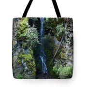 Indian Canyon Waterfall Tote Bag