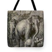 Indian Elephant, Endangered Species Tote Bag