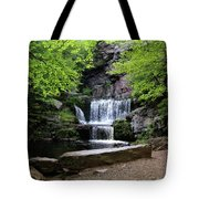 Indian Ladder Falls Tote Bag
