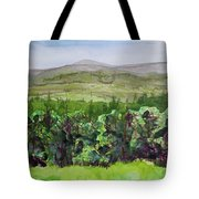 Hour Pond Mountain, Indian Lake Overlook Panorama 2 Tote Bag
