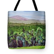 Chimney Mountain, Indian Lake Overlook Panorama 4 Tote Bag